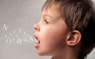 Речевые нарушения артикуляции речи: виды, коррекция, профилактика