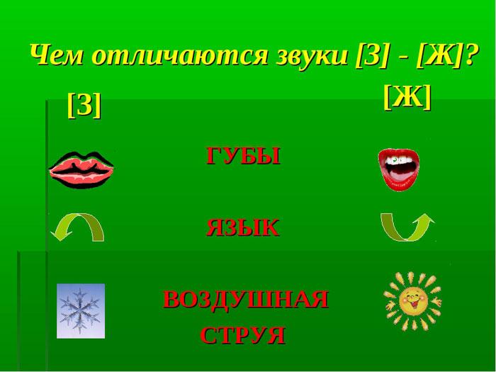 Артикуляция З и Ж отличия