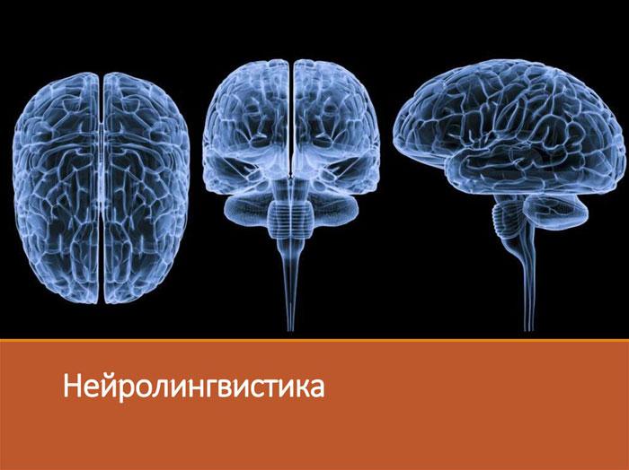 Нейролингвистика как наука