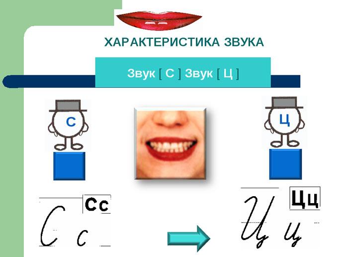Дифференциация Ц-С. Характеристика звуков 1